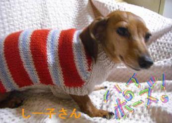 セーター3.JPG