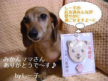ワンお守り1.JPG