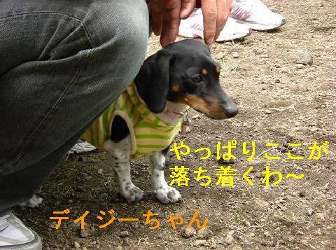 軽井沢11.JPG