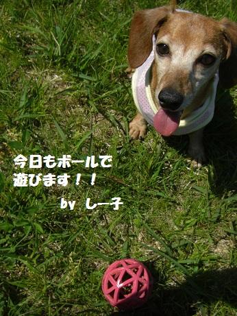 2012.5.5NO3.jpg