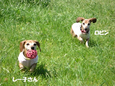 2012.5.5NO5.jpg